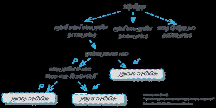 עץ החלטות לבחירת אסטרטגיות להתמודדות עם בעיות סוררות